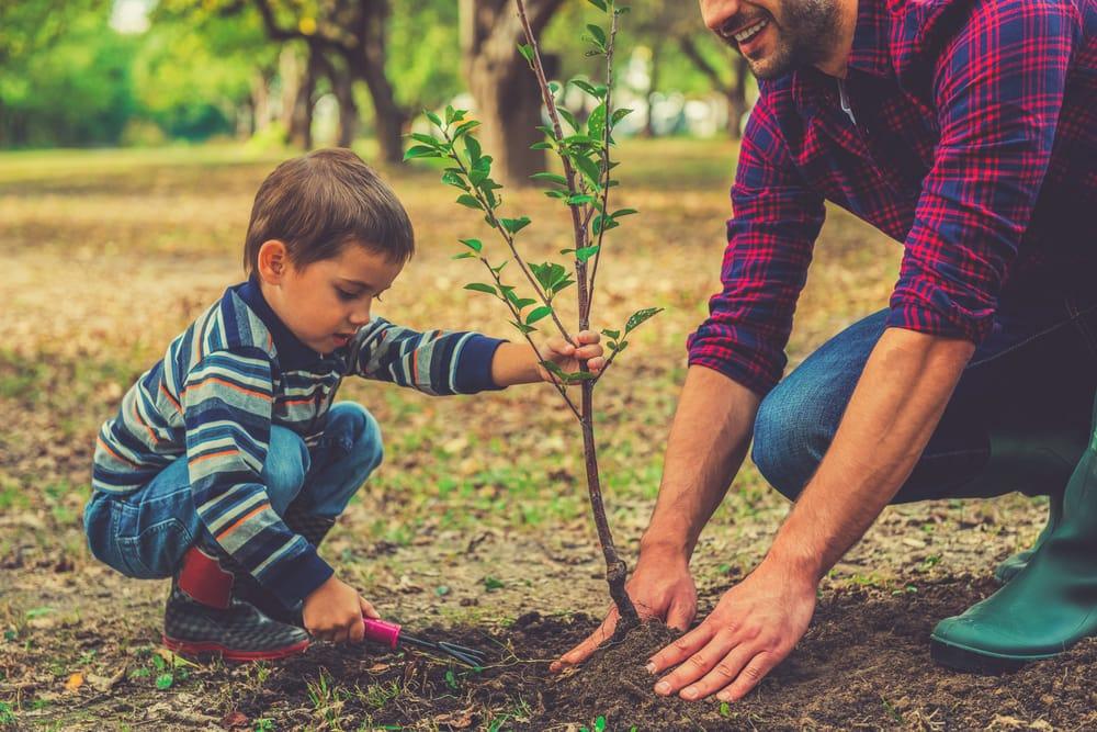 Tree-Planters-2-1